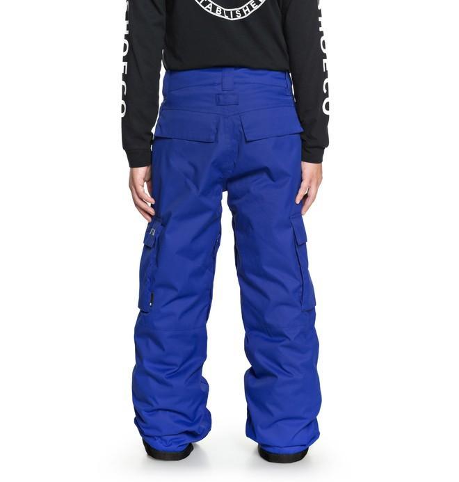 Штаны для сноуборда детские DC shoes Banshee купить в Boardshop №1