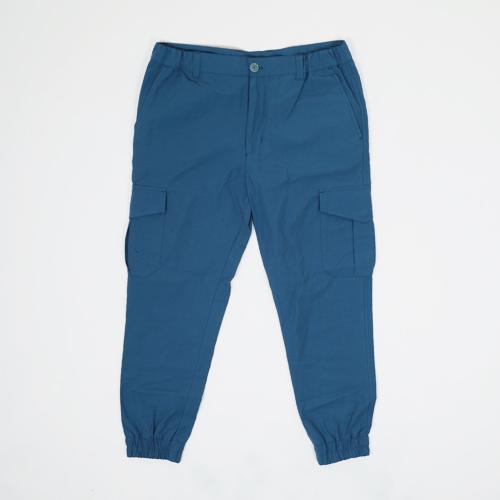 Брюки Anteater Cargo купить в Boardshop №1