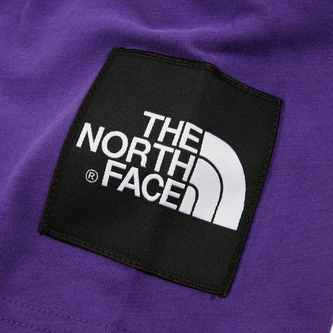 Футболка The North Face Fine купить в Boardshop №1