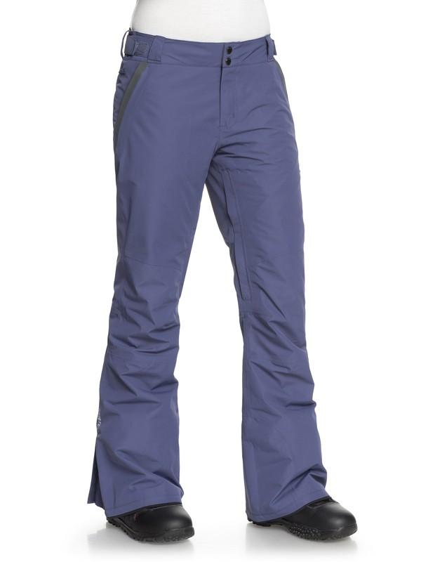 Штаны для сноуборда Roxy Rushmore 2L GORE-TEX® купить в Boardshop №1