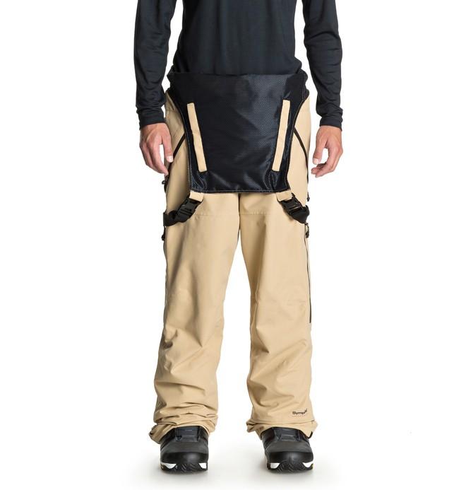 Штаны для сноуборда DC shoes Nomad купить в Boardshop №1